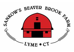 beaver-brook
